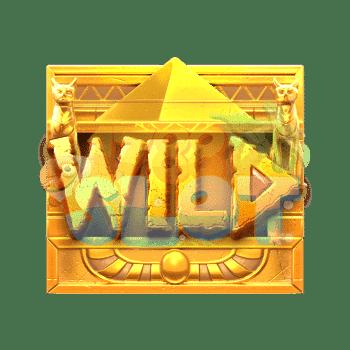 Scatter Symbol Wild Symbol