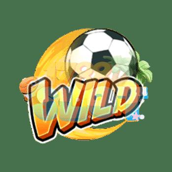 Wild Symbol Shaolin Soccer
