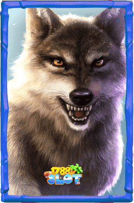 สัญลักพิเศษ-หมาป่า-min