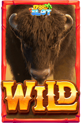 wild-สล็อตวัวกระทิง-min
